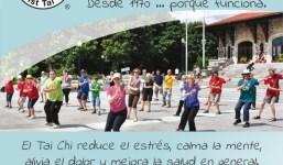 Clases de Tai Chi en la isla de La Palma