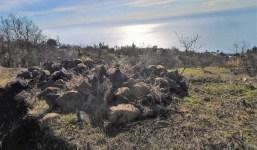 V-136: Terreno en El Llano de Tijarafe - Tinizara