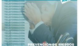 Curso Prevención de Riesgos Laborales: Riesgos Psicosociales (Teleformación)
