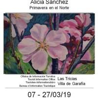 Primavera en el norte, Alicia Sánchez
