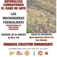 Las Machuqueras - Fuencaliente sin Rabo de Gato