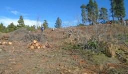 V-136: Terreno en El Llano de Tijarafe – Tinizara