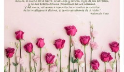 Biodanza, Florece a la Vida