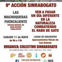 9º acción Sinrabogato
