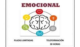 Curso Online. Inteligencia emocional, subvencionado por el Servicio Canario de Empleo