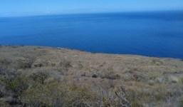 Terreno en la costa de Puntagorda