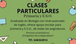 Se ofrece CLASES PARTICULARES para Primaria y E.S.O.