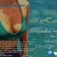 """Exposición """"Bikinis Redes"""", C. Walter."""