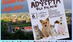 Ruta Canina x Breña Baja