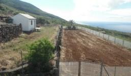 A la venta terreno con pajero en una buena zona de Barlovento