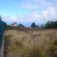 Se vende suelo rústico - Uso Agrario  *Certificado Agricultura Ecológica* En Los Llanos de Aridane