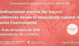 Biodiversidad marina del futuro: evidencias desde el laboratorio natural de Punta de Fuencaliente