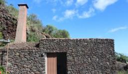 Bodega con casita y terreno con viñas en producción