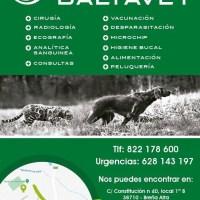 BALTAVET - Clínica Veterinaria abre sus puertas el lunes 3 de febrero en Breña Alta