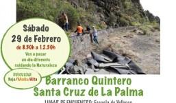 28ª Acción Sinrabogato La Palma