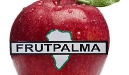 FUTPALMA . Frutas y Verduras