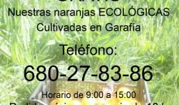 Se venden naranjas ecológicas (certificadas)