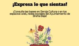 BREÑA BAJA: Concurso de Narrativa Escritura Creativa