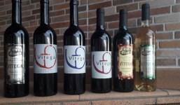 Si necesita vino, Vinos Vitega se lo lleva a domicilio