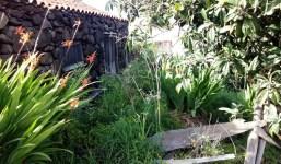 Vendo pajerito con 1000m2 de terreno en Puntagorda