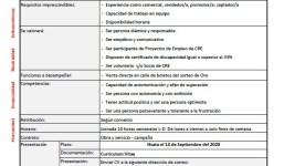 Aux Captación - Vendedores/as Boletos Sorteo Oro