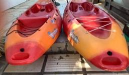 Kayak (2 unidades)