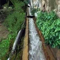 Arriendo acciones de agua Pozo El Roque
