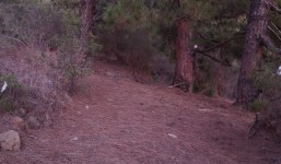 Terreno en Tijarafe en zona tranquila