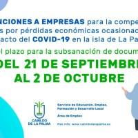 Subsanación Sub. para la compensación a las empresas de gastos de pérdidas económicas ocasionadas por COVID 19 en La Palma
