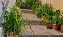 Se alquila piso en Argual. Los Llanos