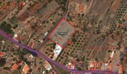 A la venta parcela urbanizable en Puntagorda