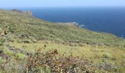 Gran terreno cerca de la costa en Villa de Mazo