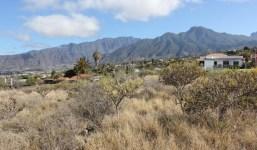 Terreno con derechos de agua en La Laguna