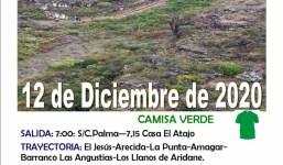 El Jesús (Tijarafe) - Los Llanos de Aridane