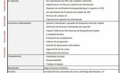 Técnico/Técnica de Proyecto Empleo Comarca Oeste de La Palma