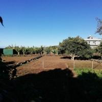 Terreno agrario en Los Llanos de Aridane