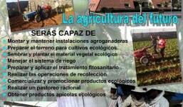 Grado Medio de Producción Agroecológica