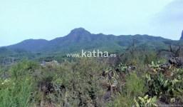 Terreno para un proyecto de hotel rural en La Palma