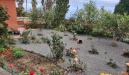 Limpieza integral de Fincas y Jardines