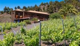 Propiedad con viñas y casa en La Palma