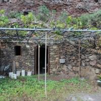 Viñedo en La Palma con cabaña y bodega