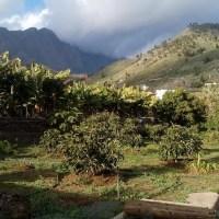 A la venta terreno agrario en Los Barros