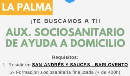 Auxiliar sociosanitario de ayuda a domicilio San Andrés  y Sauces