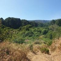 Terreno agrario con vivienda en Franceses