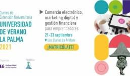 Curso Comercio Electrónico, marketing digital y gestión financiera. Universidad de Verano La Palma 2021