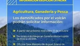 Información sector primario erupción volcán