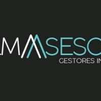 PALMASESORES