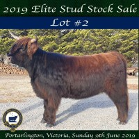 2019 National Show SALE LOT #2