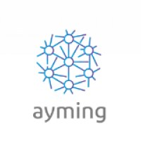 AYMING - Innovation Performance Consulting