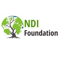 NDI Foundation